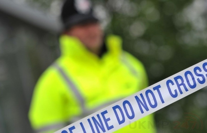two arrested as murder investigation launched in rochester