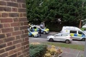 Armed Police descend on to Orpington Road after woman brandishes a weapon