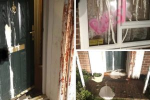 pensioners home involved in a vigilante vandal attack