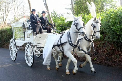 big fat gypsy send off in seven oaks for twins billy and joey smith 5