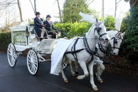 big fat gypsy send off in seven oaks for twins billy and joey smith 6