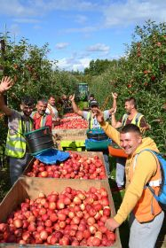 furloughed staff can work on farms say goverment