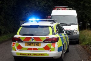 emergency services find man dead in wooded area near maidstone 2