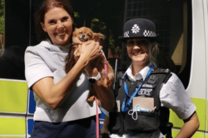 a fantastic reason as to why you should id chip your pets as dog is reunited