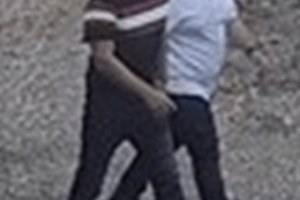 cctv images of two men who could have information to assist an investigation into criminal damage in a village near ashford have been released by officers
