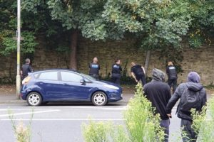 man who climbed tree to evade capture by police is caught