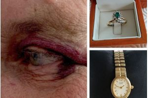 manhunt still active after cowardly terrifying assault on two elderly vulnerable victims